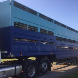 Millmoor Cattle/sheep Trailer